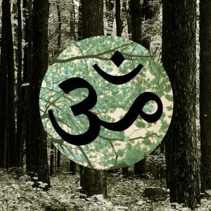 Нияма - 10 соблюдений в йоге