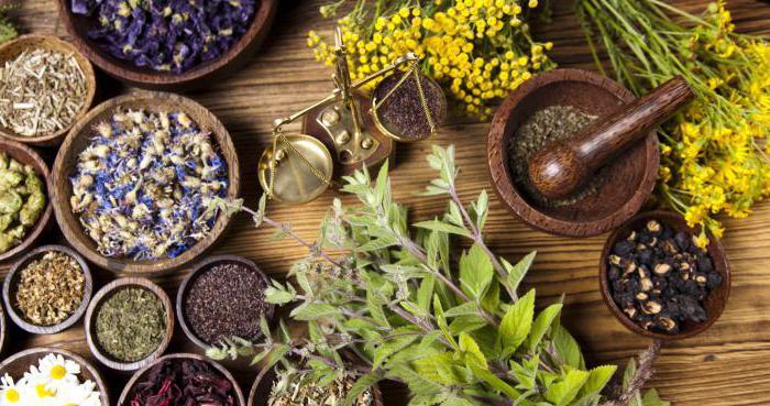 Очищение организма по методу Марвы Оганян - рецеп травяного сбора
